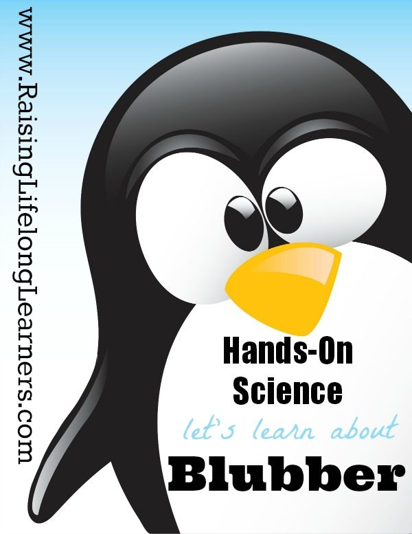 blubber science experiment for kids