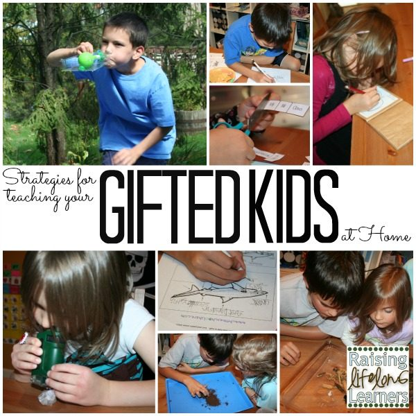 Strategies for Teaching Gifted Children at Home