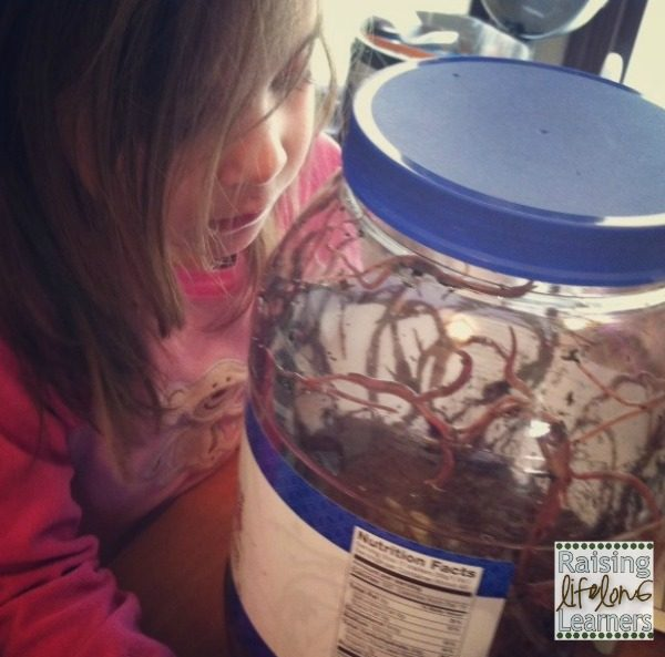 Learning About Composting Worms