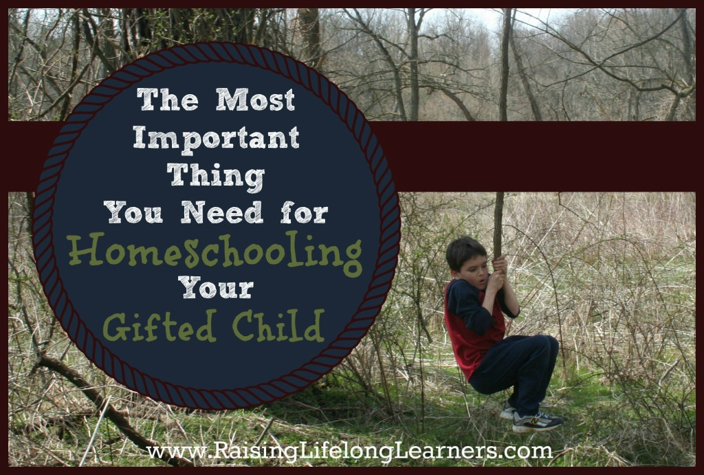 The Most Important Thing You Need for Homeschooling Your Gifted Child via www.RaisingLifelongLearners.com (1)