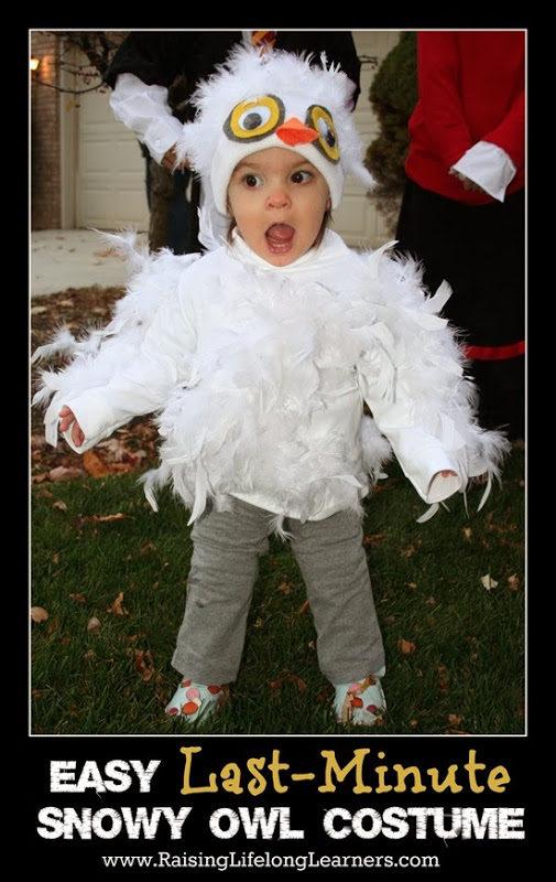 sc 1 st  Raising Lifelong Learners & Easy Last Minute Snowy Owl Costume