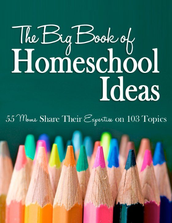 The Big Book of Homeschooling Ideas -- 55 Moms Share Ideas on 103 Topics - buy your copy today at www.RaisingLifelongLearners.com