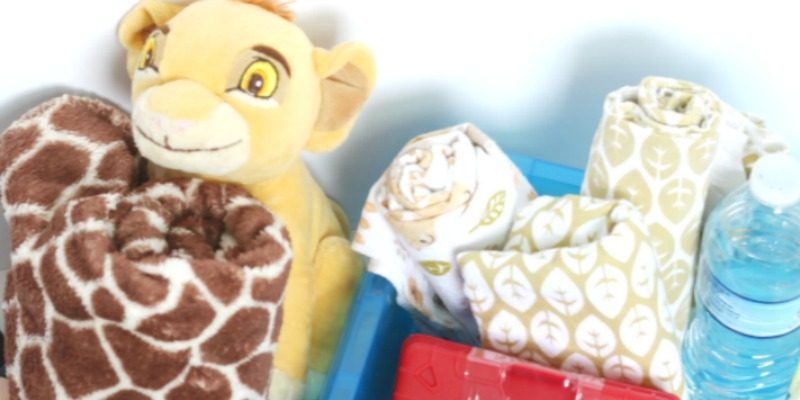 Creating an On-the-Go Baby Survival Kit