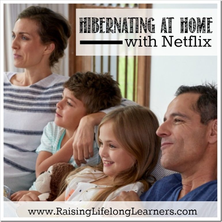 Hibernating at Home with Netflix