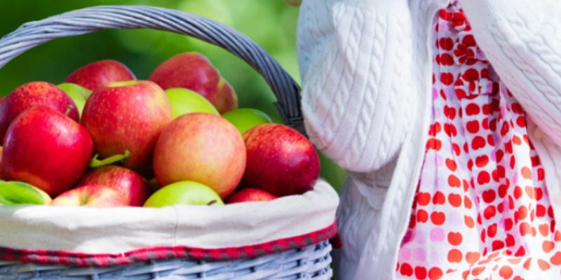 Ten Great Autumn Themes for Preschoolers