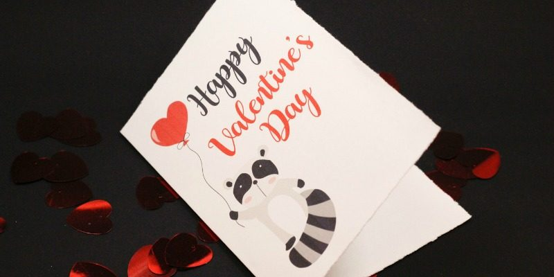 Cute Raccoon Valentine's Day Card | Free Printable