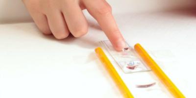 Easy Homemade Microscope for Kids