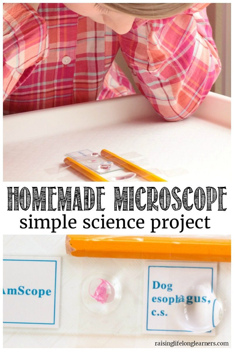 You won't believe how easy it is to make your own microscope! This homemade microscope has a magnification of 4 times the human eye!