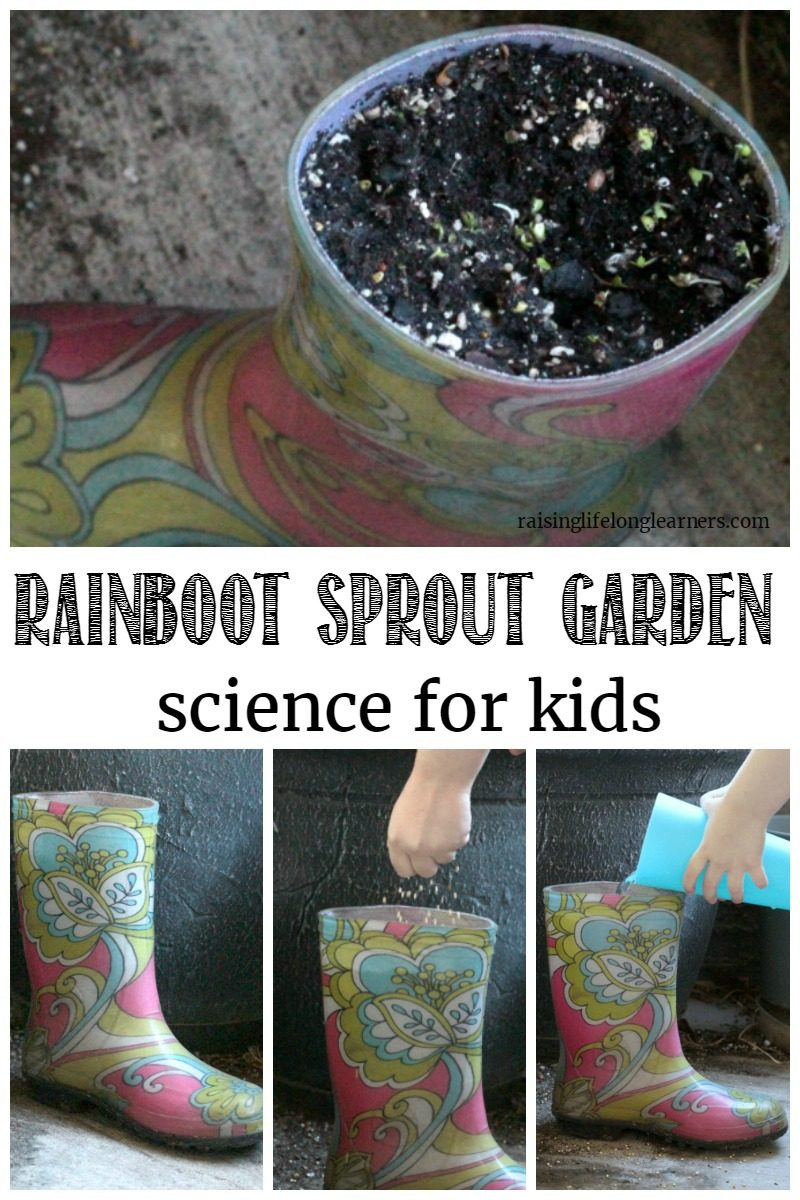 Rainboot Sprout Garden Science for Kids Raising Lifelong Learners