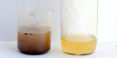 Sand Filter Science Experiment