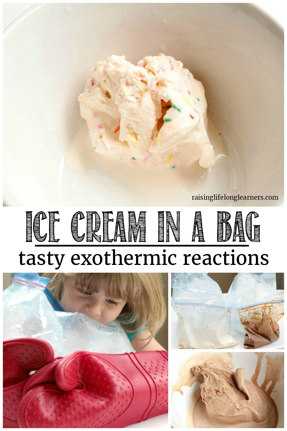 What is the best way to learn about exothermic reactions? Making ice cream in a bag of course! Kids will love this tasty science experiment!