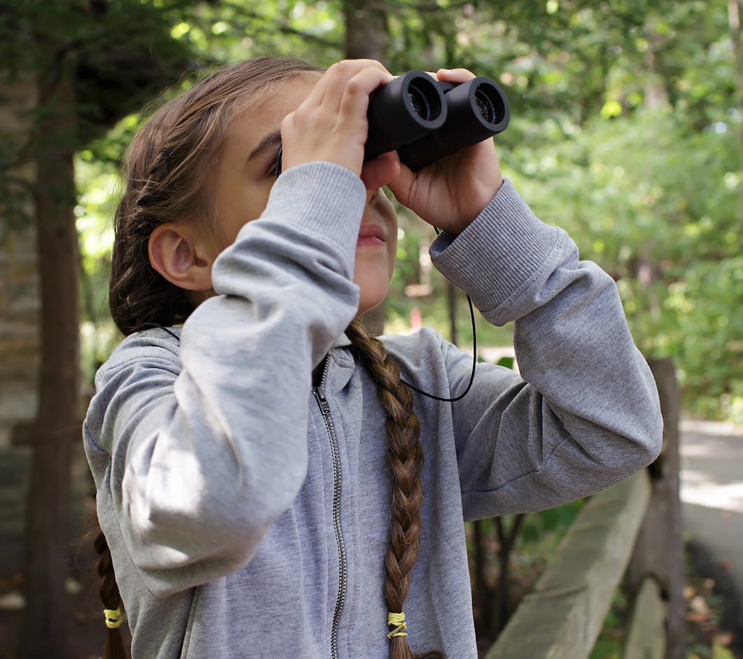 a week of epic backyard nature science fun summer camp at home