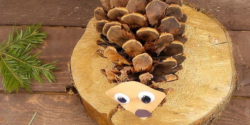 Super Cute Pinecone Hedgehog Craft for Kids
