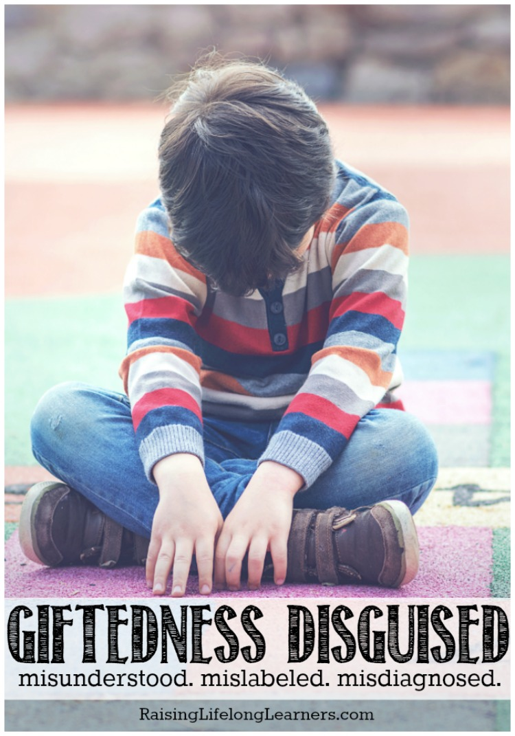 "Giftedness Disguised - Misunderstood Giftedness is not an in-your-face, cut-and-dry, easy-to-administer ""diagnosis."" Nope; giftedness is a world full of paradoxes.Mislabeled Misdiagnosed"