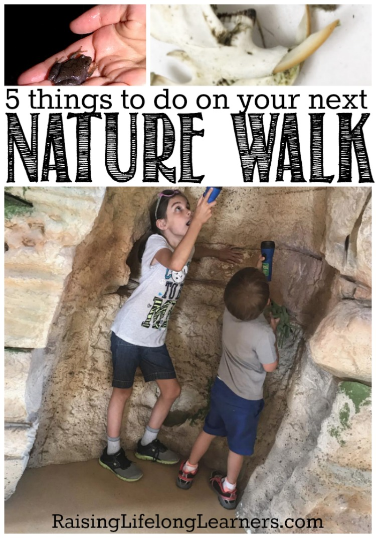 5 Things To Do on Your Next Nature Walk