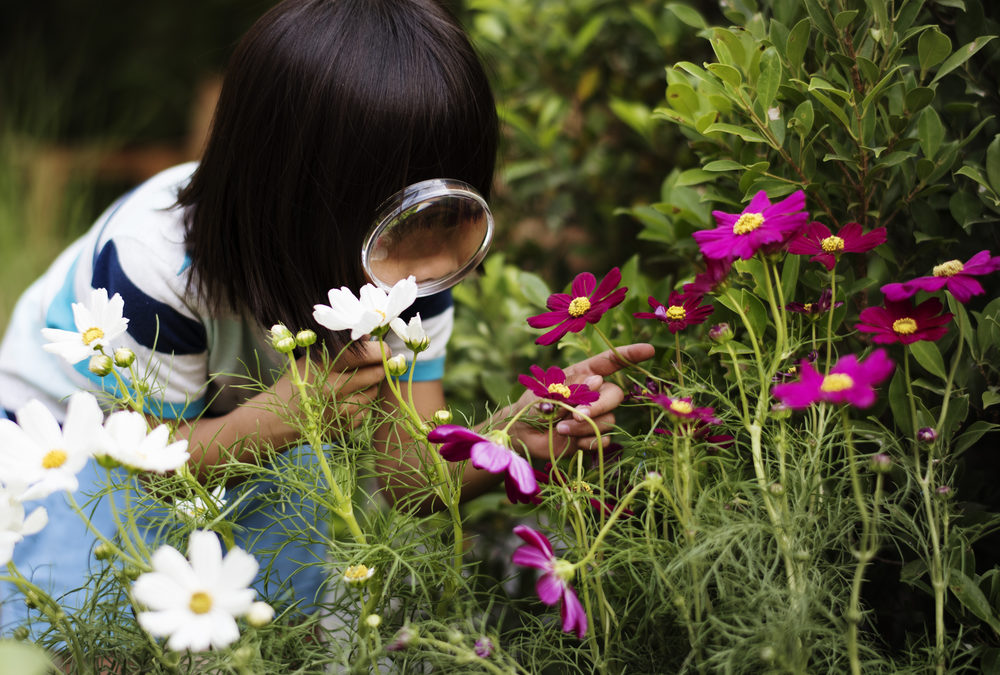 Nurturing Your Gifted Toddler