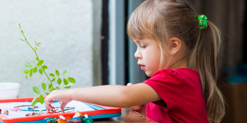 Strewing in Your Homeschool to Spark Curiosity