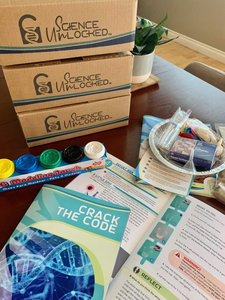 The Very Best Interest-Led Option For Homeschool Science