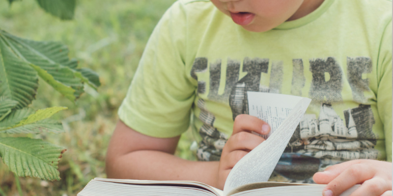 Homeschooling A Gifted Child Who Struggles With Reading