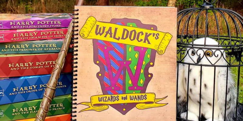 Harry Potter Homeschooling with Waldock's Wizards And Wands